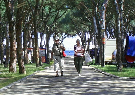 Camping Blanes - a7433-image1.jpg